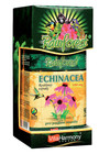 Rainforest - Echinacea Purpurea 500 mg 90tbl.